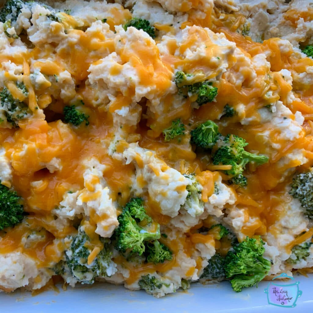 close up of chicken broccoli and rice